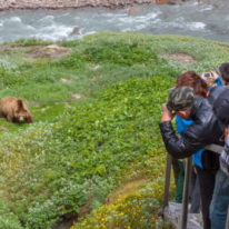 Kamchatka photography tour