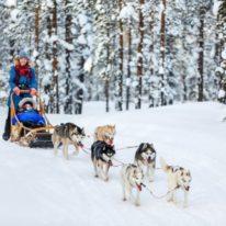 Winter tour Russia