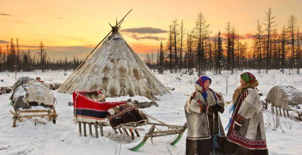 Nenets of Yamal