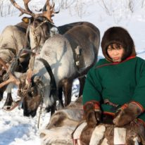 Nenets of Yamal Peninsula reindeer herders, travel to Yamal