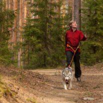 Karelia tour Russia