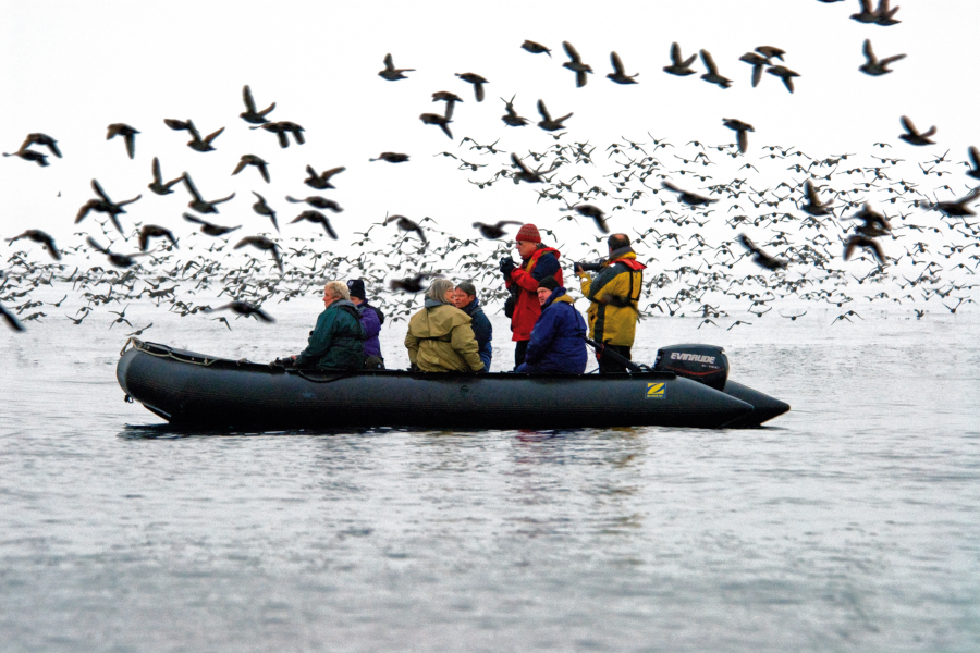 Kamchatka Commander Kuril Islands expedition cruise