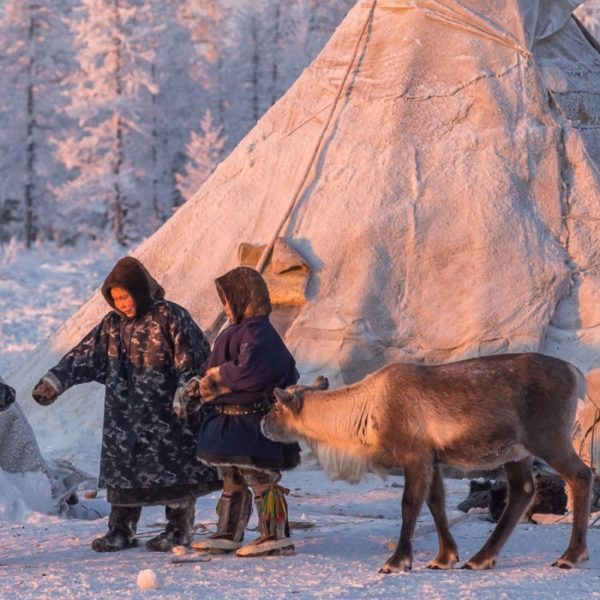 Yamal tour Nenets Siberian migration tribes Russia,Yamal Peninsula travel guide